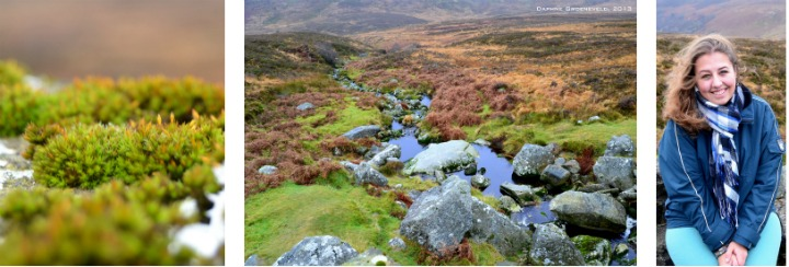 Wicklow Mountains, Ierland