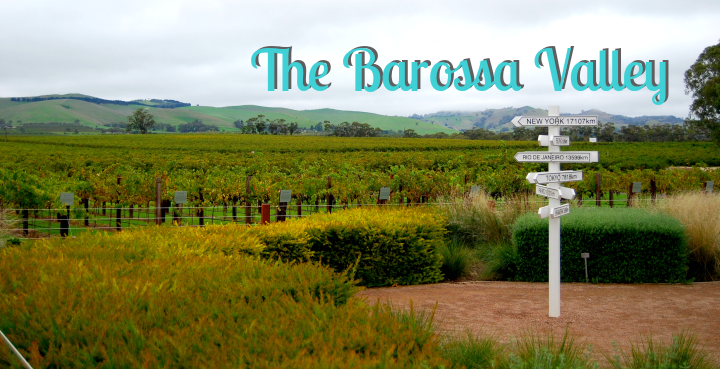 The Barossa Valley_It's Travel O'Clock