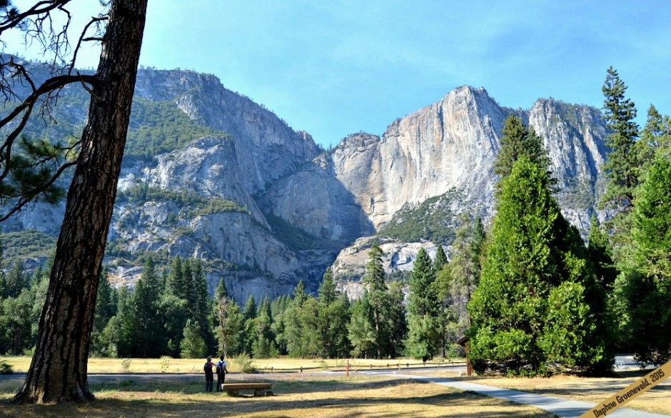Sunkissed in Yosemite National Park | via It's Travel O'Clock