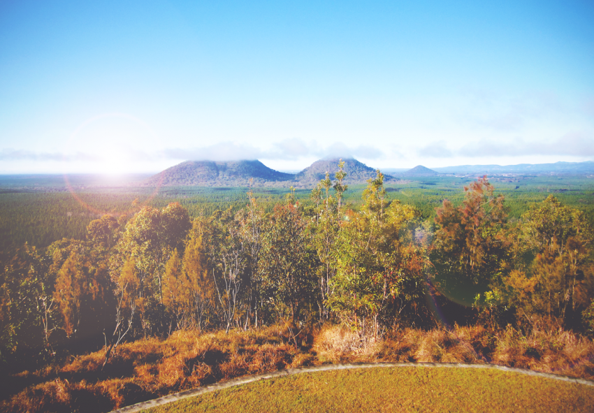 Sunkissed | Glass House Mountains, Australië